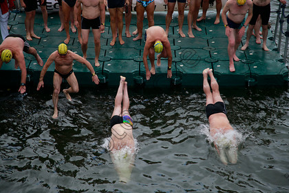 N17192435 