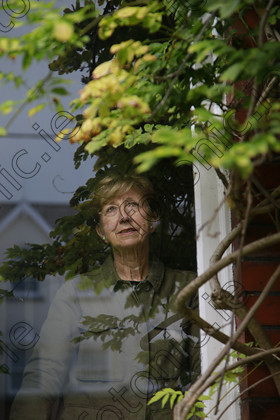 N17236799 