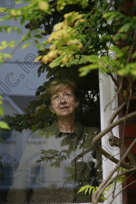 N17236808 