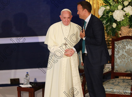 N181891017 