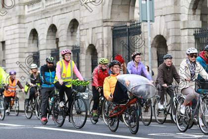 N171931308 