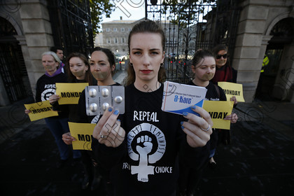 N17236659 