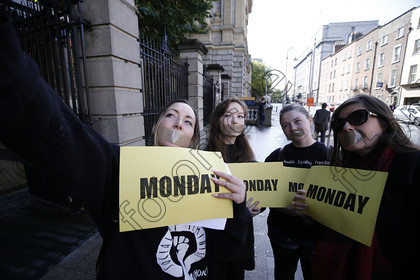 N17236756 