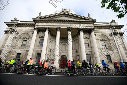 N17193776 