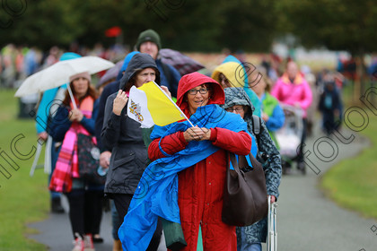 N18190477 