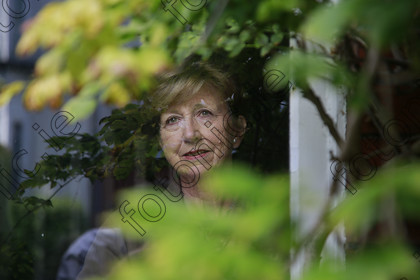 N17236768 